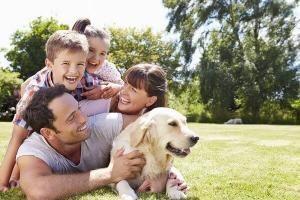 camping dans le verdon qui accepte les chiens